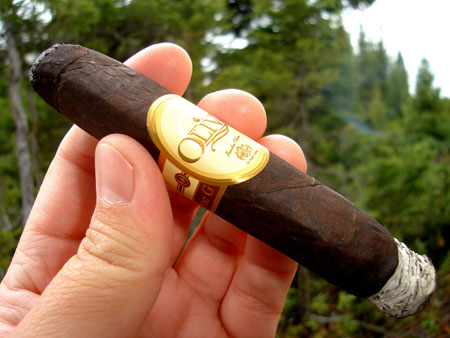 Oliva Serie G Maduro