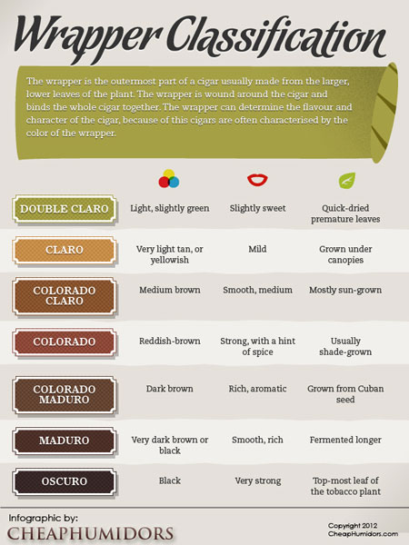 Wrapper colors infographic