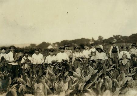 Connecticut Cigar Farm