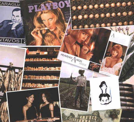 Playboy - the book of cigars